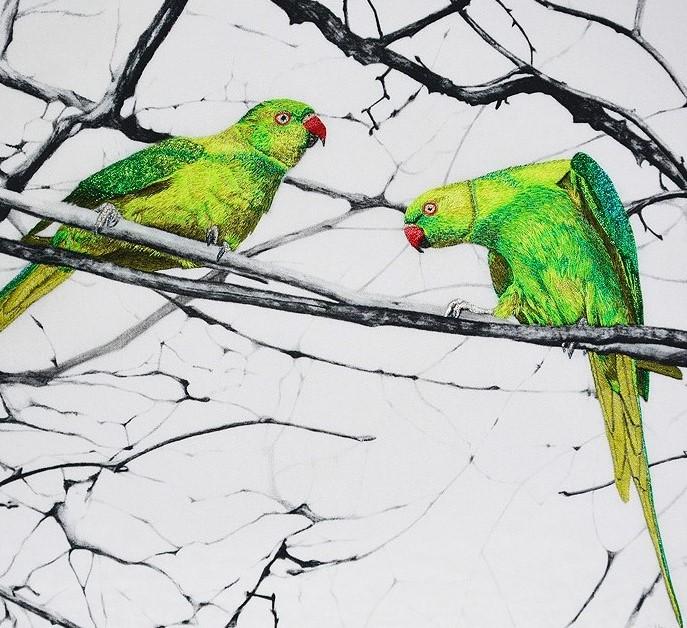 Hyde Park parakeets